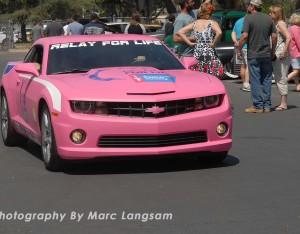 pinkCamaro