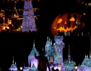 DisneySeasonal